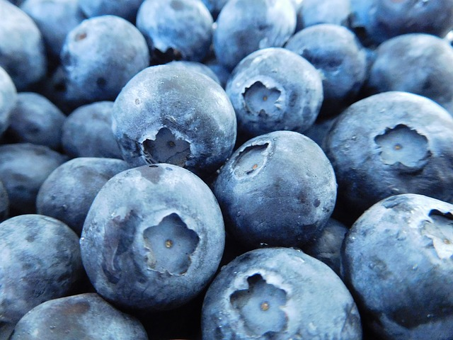 blueberries-1218467_640
