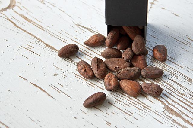 cocoa-bean-1282878_640