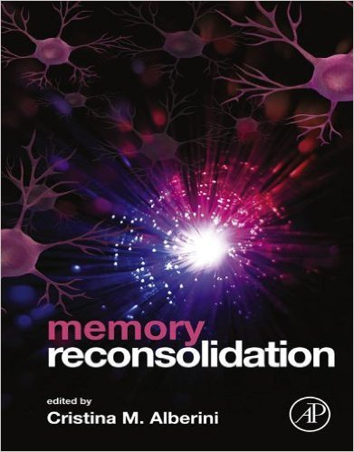 memory reconsolidation 0