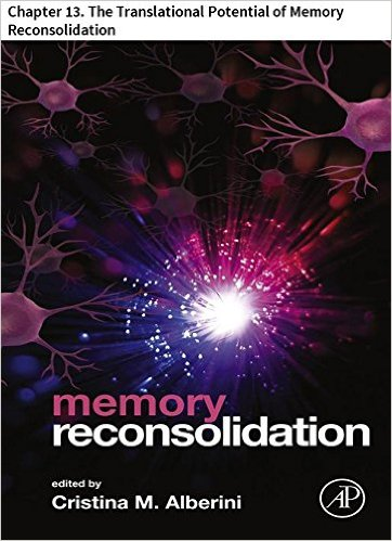 memory reconsolidation 13
