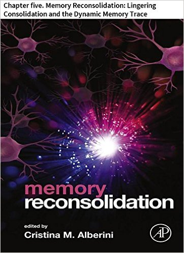 memory reconsolidation 5