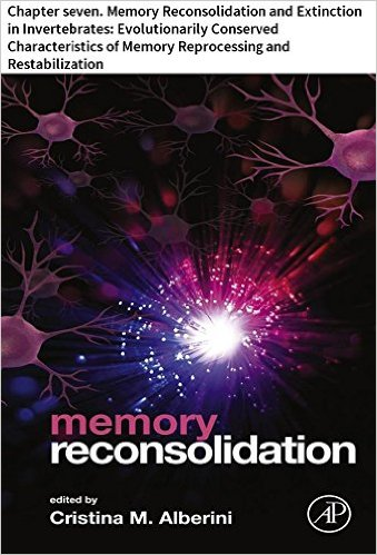 memory reconsolidation 7