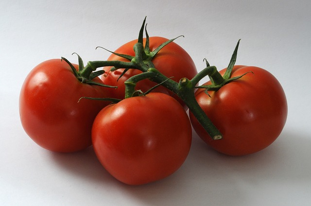 tomatoes-1241016_640