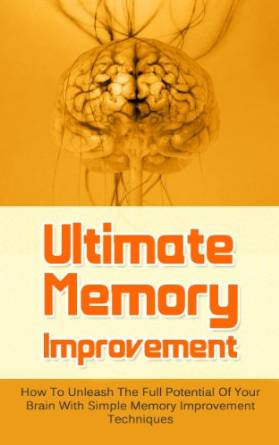 vincent miles ultimate memory improvement