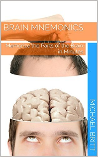 Brain Mnemonics: Memorize the Parts of the Brain in Minutes